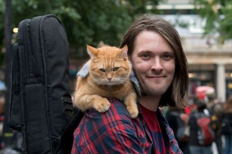 james-bowen-street-cat-bob