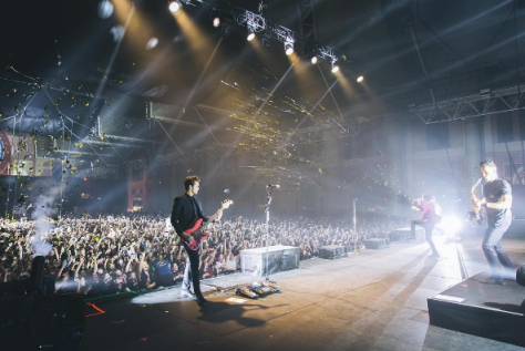 patd-allypally-3.png